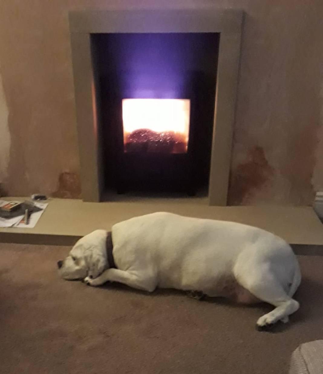 Canterbury Fireplaces Review Preston